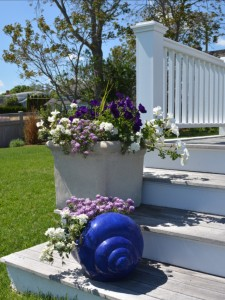 container-gardening-4